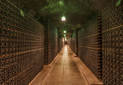 Le meilleur moyen de conserver vos vins chez vous ou dans votre magasin !