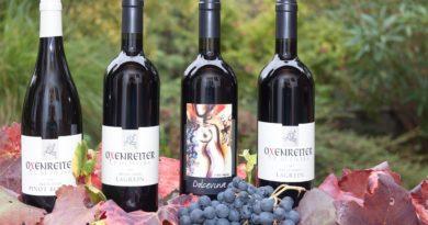 Vente de vin bio, une affaire d'étiquette